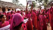 The Pink Gang Rebellion & Genetic Passport