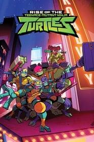 Rise of the Teenage Mutant Ninja Turtles Season 1