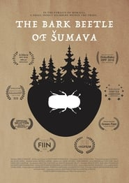 The Bark Beetle of Šumava