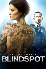 Blindspot streaming saison 1