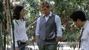 The Mentalist Season 1 Episode 7 : Seeing Red