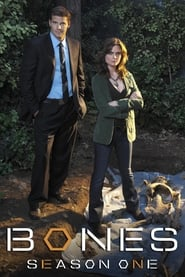 Bones - Season 9 Episode 10 : The Mystery in the Meat Season 1