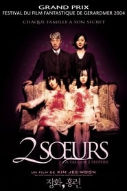 2 soeurs (2003) Netflix HD 1080p
