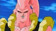 Majin-Buu Transforms