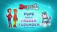 Sea Patrol: Pups Save a Frozen Flounder
