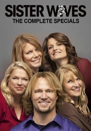 Sister Wives - Season 3 Season 0