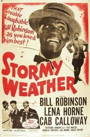 Stormy Weather Bilder