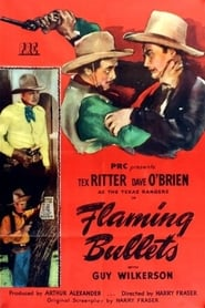 poster do Flaming Bullets