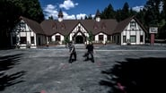 Bracken Fern Manor & Tudor House