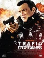 True Justice – Violence d'Action en streaming