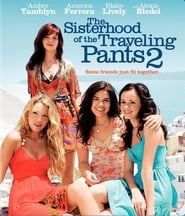 The Sisterhood of the Traveling Pants 2 Bilder