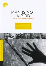 Man Is Not a Bird affisch