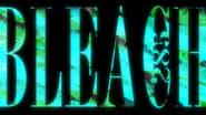 Bleach staffel 14 folge 285