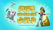Pups Go for the Gold