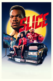 Slice 2018 720p HEVC WEB-DL x265 300MB