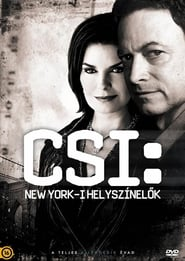 CSI: NY saison 9 episode 17 streaming vostfr