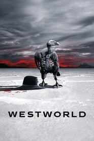 Westworld - Season One: The Maze