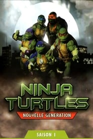 Ninja Turtles: The Next Mutation streaming vf poster