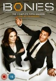 Bones - Season 1 Season 5
