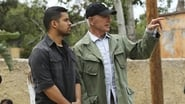NCIS saison 14 episode 24