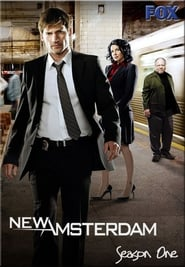 New Amsterdam streaming vf poster