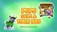Pups Save a Tour Bus