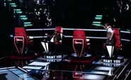 The Blind Auditions (4)