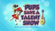 Pups Save a Talent Show