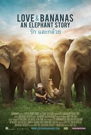 Love & Bananas: An Elephant Story (2018) Netflix HD 1080p