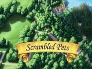 Episode 15 : Scrambled Pets
