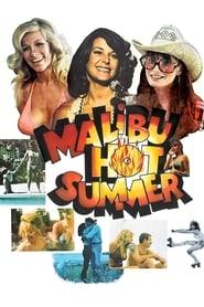 Malibu Hot Summer Netflix HD 1080p