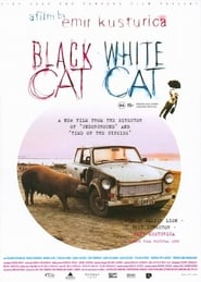 Black Cat, White Cat Poster