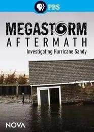 Megastorm Aftermath (2013)