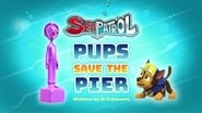 Sea Patrol: Pups Save the Pier