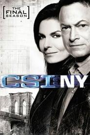 Streaming CSI: NY poster