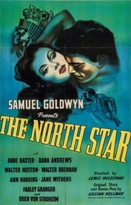 Affiche de Film The North Star
