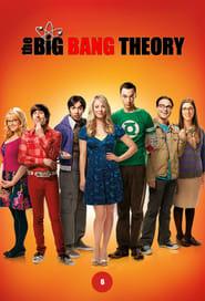 The Big Bang Theory - Season 6