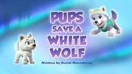 Pups Save a White Wolf