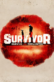 Survivor streaming vf poster