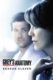 Grey's Anatomy - Season 8 Episode 9 : Dark Was the Night Season 11