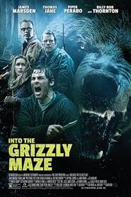 Territorio Grizzly