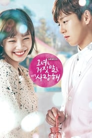 Streaming The Liar and His Lover poster