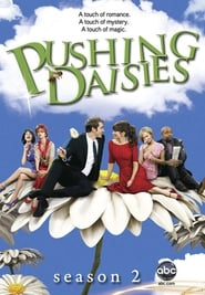 Pushing Daisies streaming vf poster