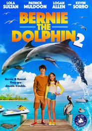 Image Bernie the Dolphin 2 2019