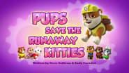 Pups Save the Runaway Kitties