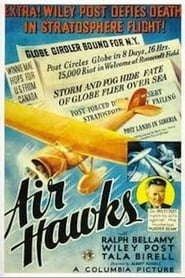 Photo de Air Hawks affiche