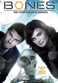 Bones - Season 1 Season 6