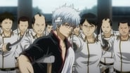 Gintama saison 7 episode 43