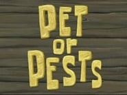 Pets or Pests