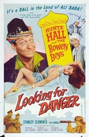 Affiche de Film Looking for Danger